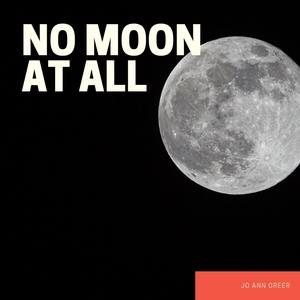 No Moon at All   Jo Ann Greer