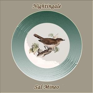 Nightingale | Sal Mineo