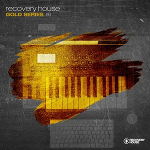 Recovery House Gold Series, Vol. 6 | Robin S