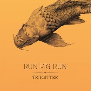 Tripsitter | Run Pig Run