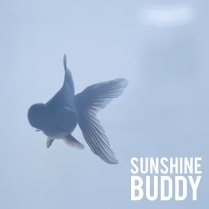 Sunshine Buddy | Laurel Collective