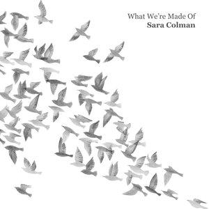 What We're Made Of | Sara Colman
