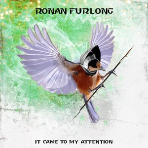 It Came to My Attention | Ronan Furlong