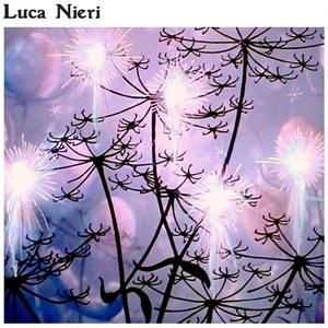 Luca Nieri   Luca Nieri