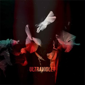 Ultraviolet | Bearcubs