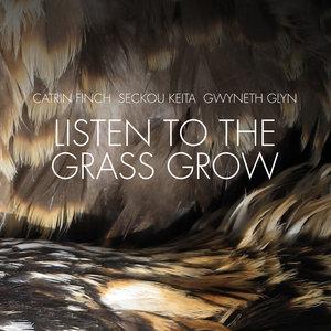 Listen to the Grass Grow   Seckou Keita