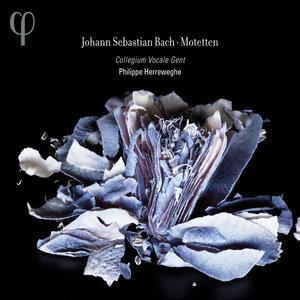 Bach: Motetten | Philippe Herreweghe