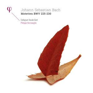 Bach: Motetten, BWV 225-230 | Philippe Herreweghe