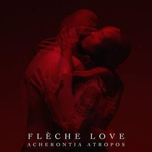 Acherontia Atropos | Flèche Love