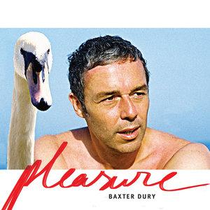 Pleasure   Baxter Dury