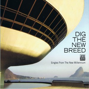 Dig the New Breed | The Past Present Organisation