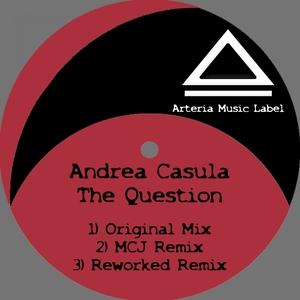 The Question   Andrea Casula