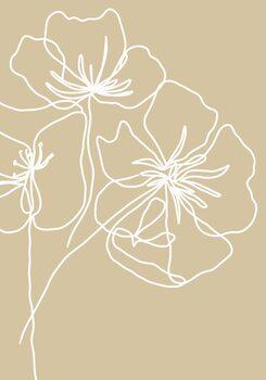 Ilustracja White poppy