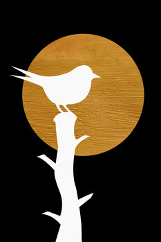 Illustration Bird