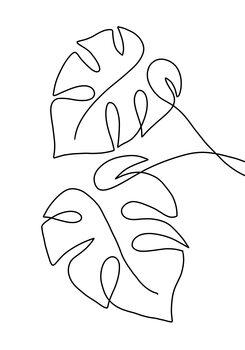 Canvas Print Monstera line art