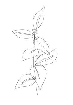 Illustration Leaf line art 2