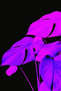 Ilustratie Acid leafs