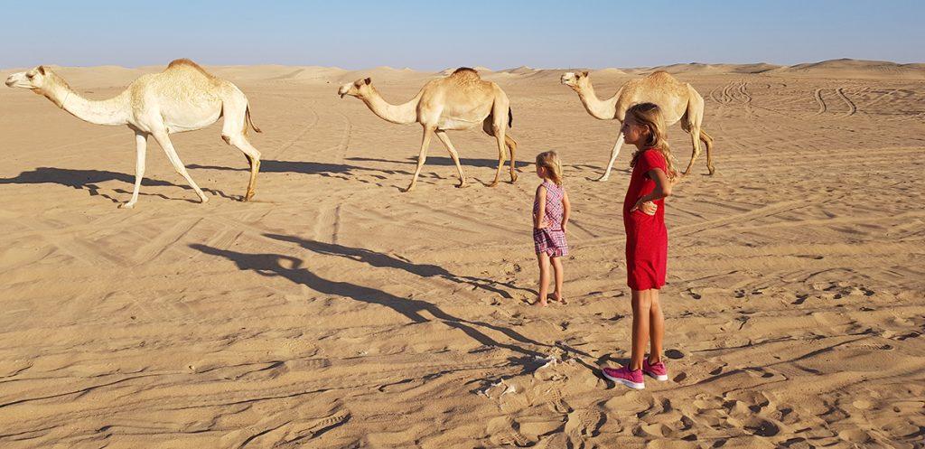 koti ulkomailla ja kameleita aavikolla