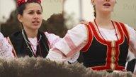 Szlavónia és Drávaszög népművészete