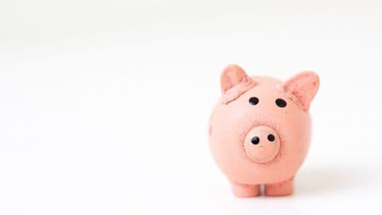 piggybank insurance