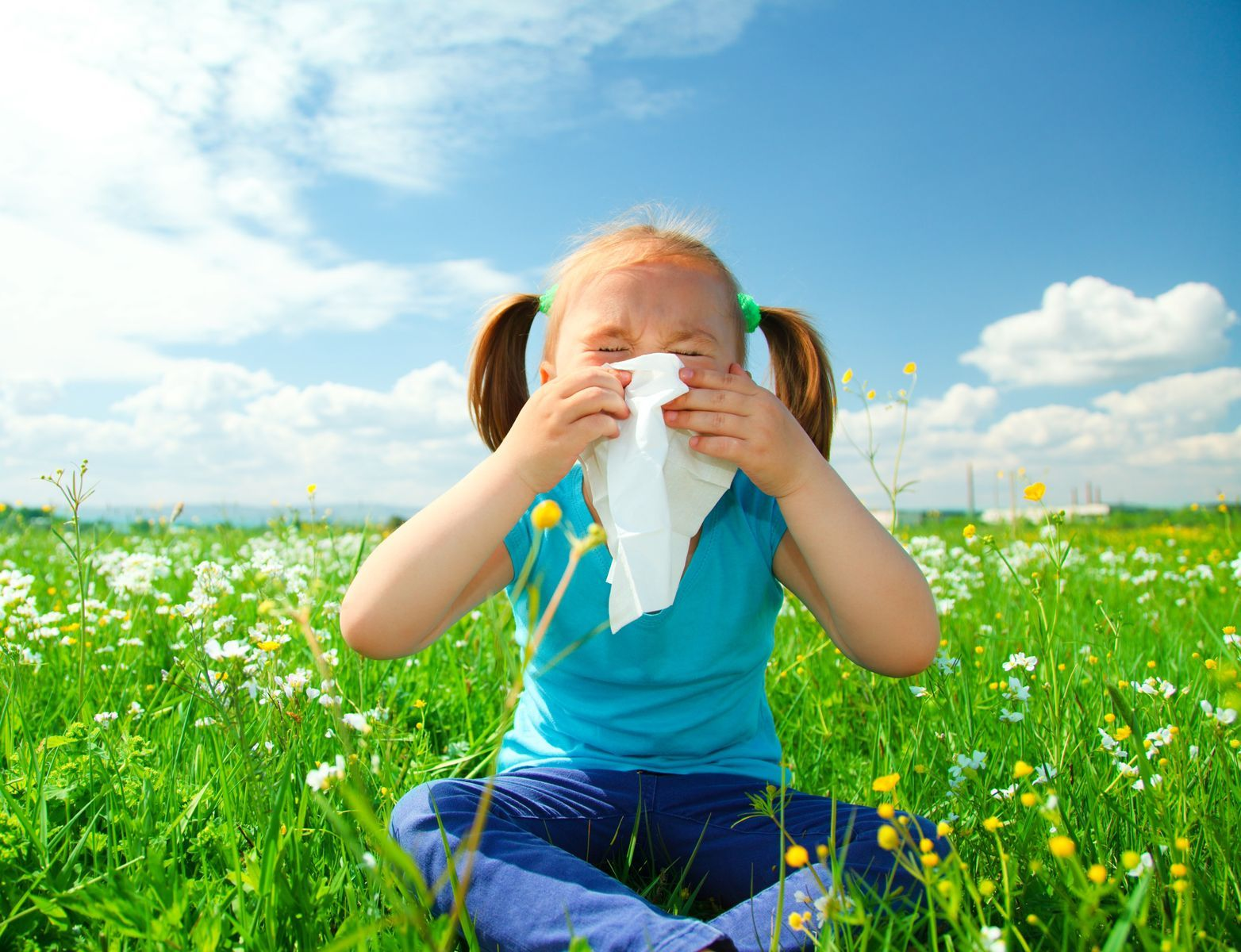 Make Household Allergens Poof! Disappear
