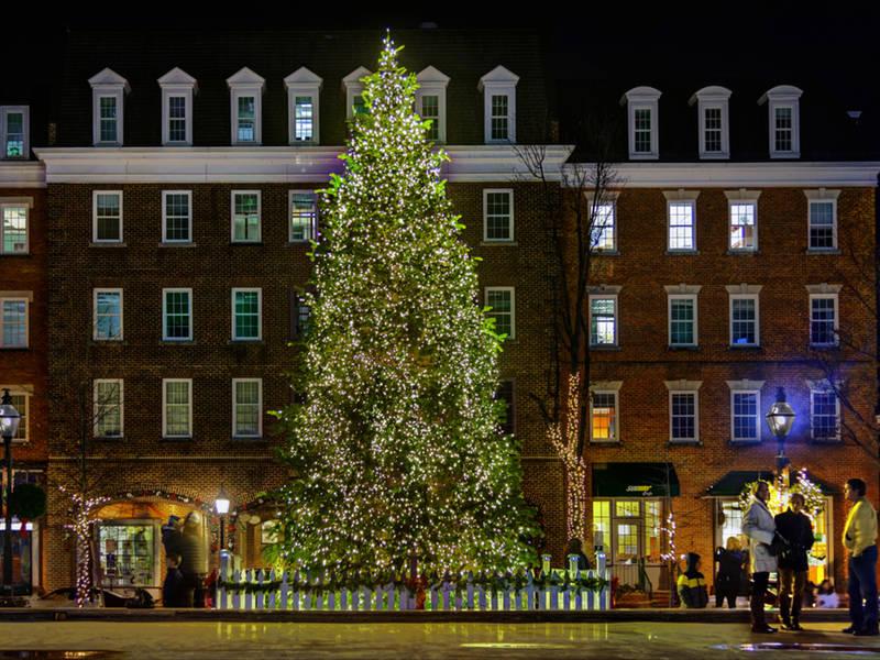 Alexandria Tree Lighting Ceremony