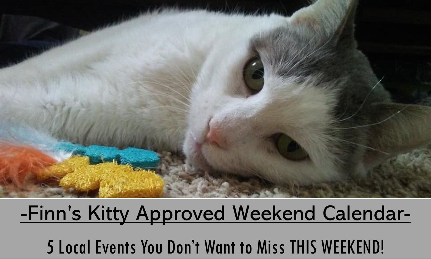 Don't miss these 5 events in the Hershey Area this weekend!