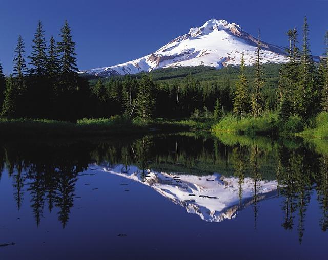 Buy a Home / Oregon Bond ResidentialLoan Program