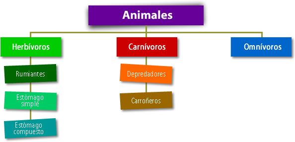 Animales tipo de alimentación