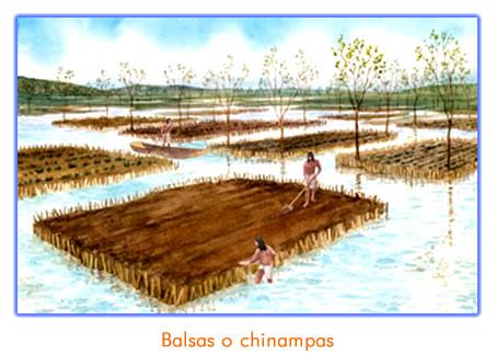 aztecas_chinampas