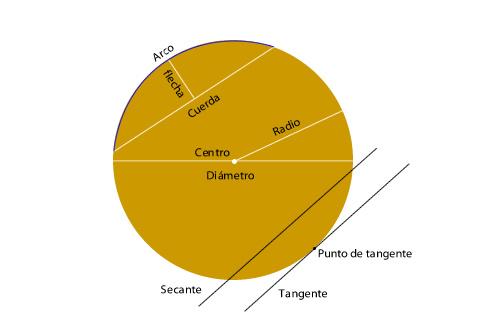 circunferencia y el círculo