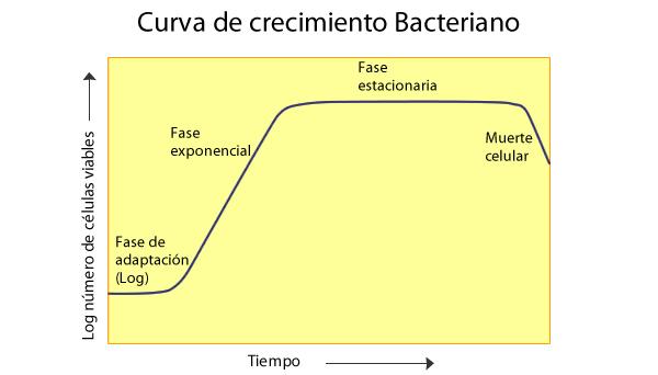 enfermedades_1.jpg (600×342)