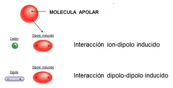 fuerzas_intermoleculares_4.jpg (566×290)