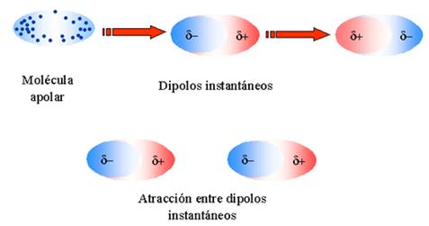 fuerzas_intermoleculares_5.jpg (477×251)