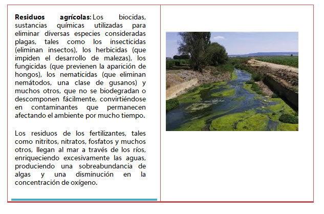 Impacto ambiental a nivel mundial