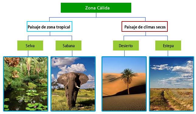paisajes de la zona cálida o tropical