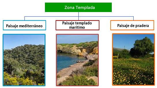 paisajes de las zonas templadas
