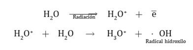 radiactividad_efectos_2.jpg (392×103)