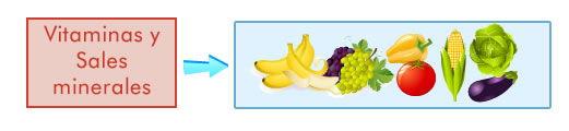Vitaminas y sales minerales
