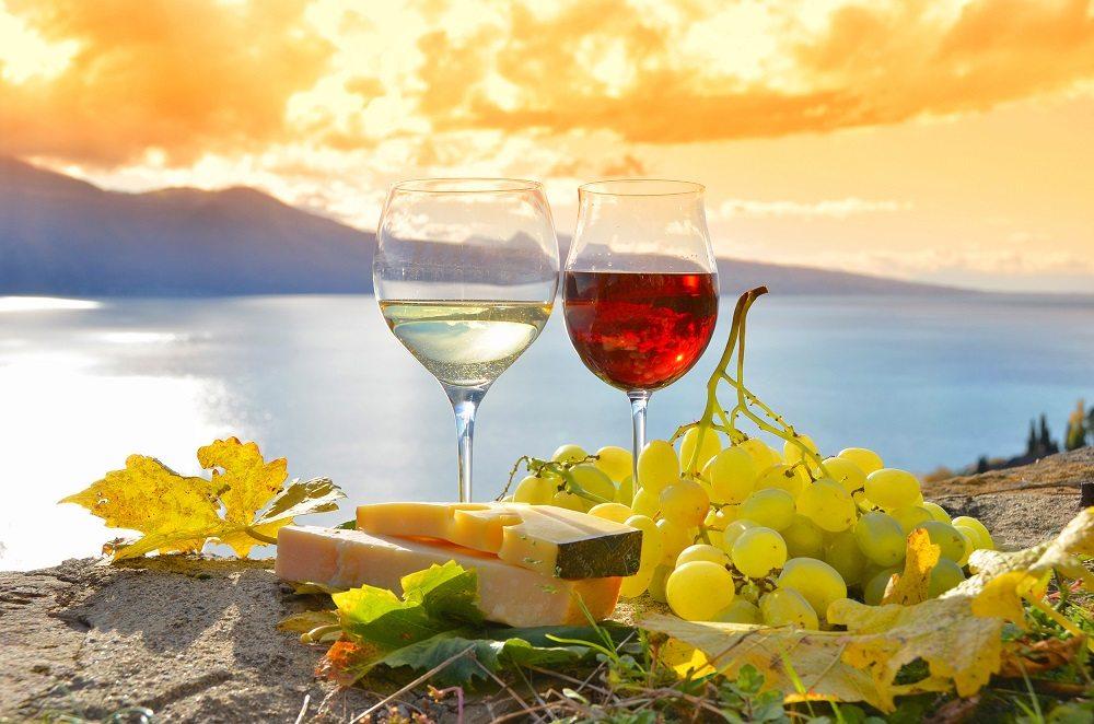España es el país con mayor diversidad vitivinícola del mundo