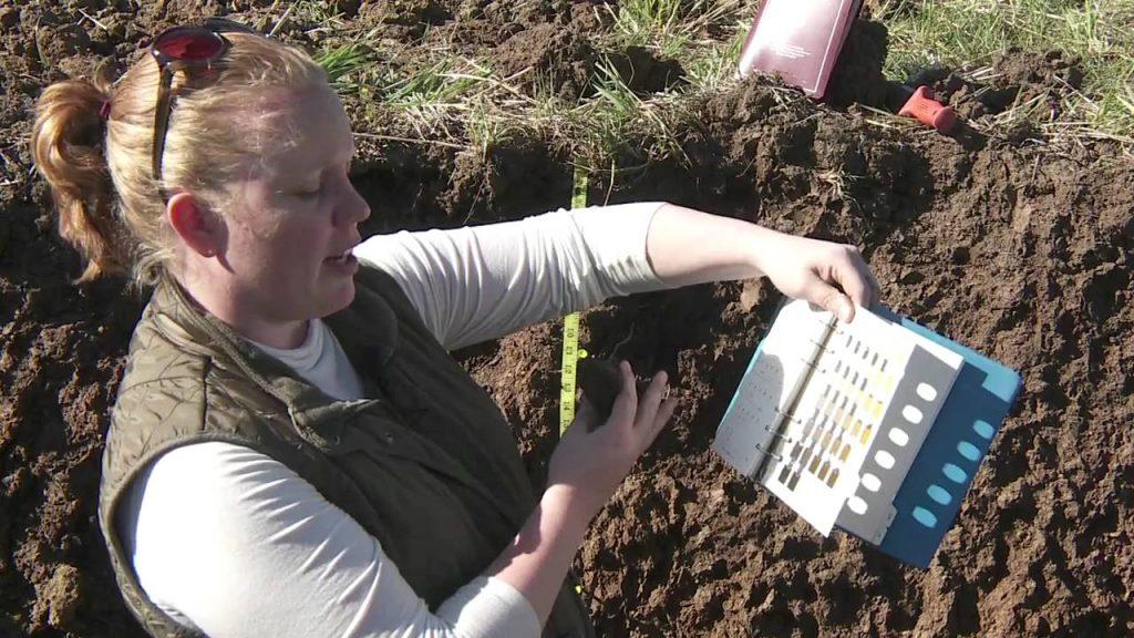 Descripción de suelos