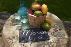 Mango Picnic w Chalkboard 1