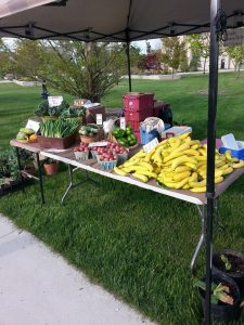 Canada-Banana-Farms-products-on-sale-at-the-Goderich-Market