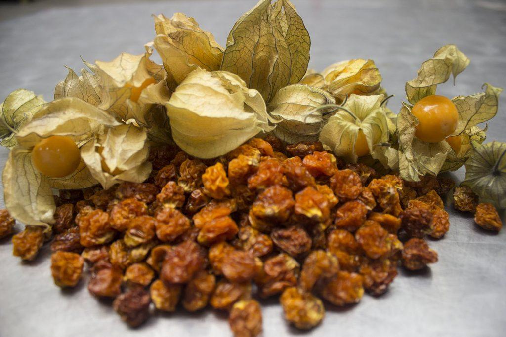 Colombia: Novacampo apuesta por snacks saludables en base a frutas exóticas