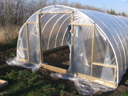 greenhouse11