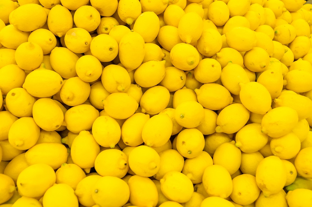 Argentina: Huelga 'paraliza' cosecha de limón tucumana en inicio de temporada