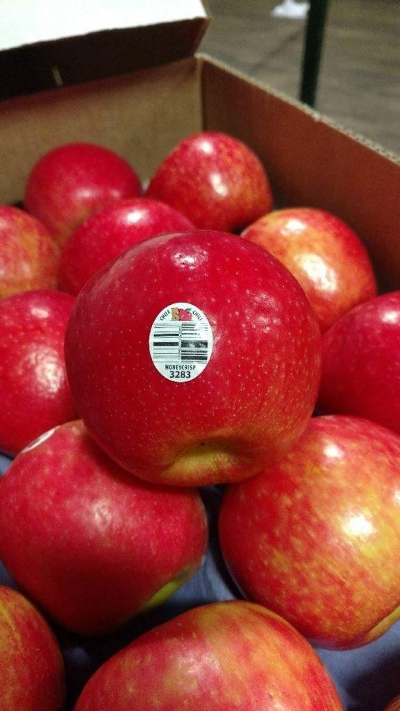 Récord en envíos de manzanas chilenas Honeycrisp llegan a Estados Unidos