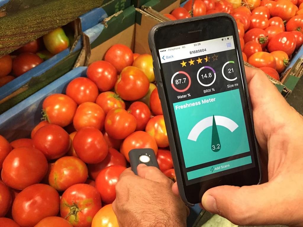 Innovación: AclaroMeter permite identificar parámetros de la fruta con tu celular