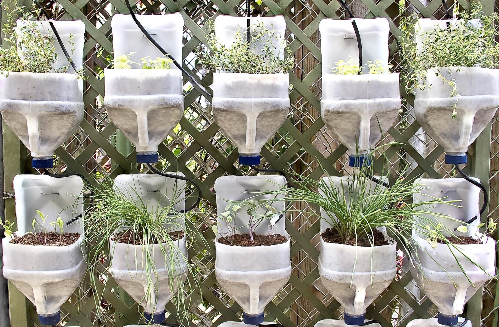 Gu a para hacer un huerto vertical con materiales for Materiales para un vivero forestal