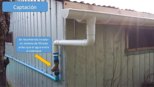 C mo construir un sistema de captaci n y acumulaci n de for Como mantener el agua limpia de un estanque